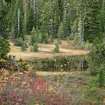 Paradise Meadows Pond